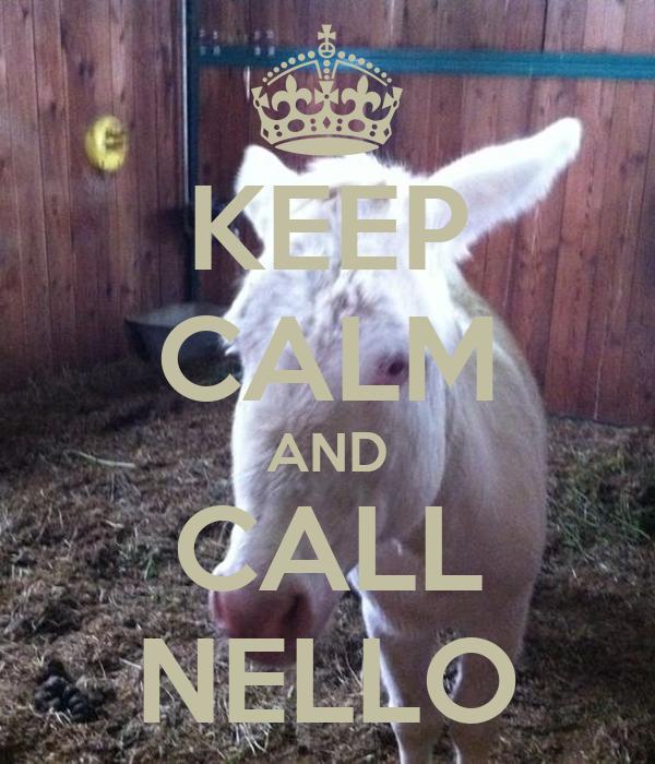 KEEP CALM AND CALL NELLO