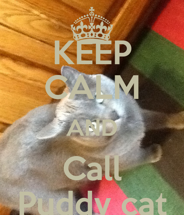 KEEP CALM AND Call Puddy cat