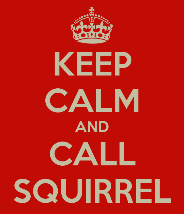KEEP CALM AND CALL SQUIRREL