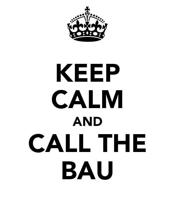 KEEP CALM AND CALL THE BAU