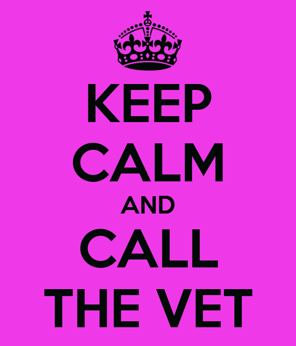KEEP CALM AND CALL THE VET