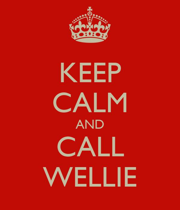 KEEP CALM AND CALL WELLIE