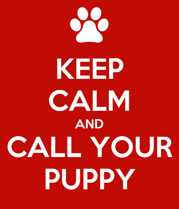 KEEP CALM AND CALL YOUR PUPPY