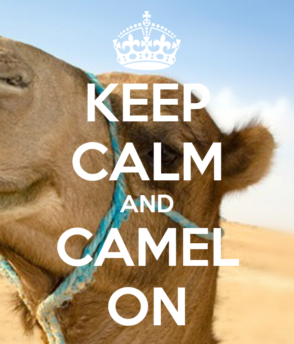 KEEP CALM AND CAMEL ON