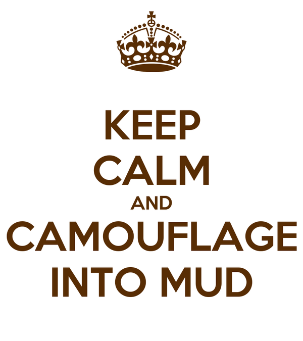 KEEP CALM AND CAMOUFLAGE INTO MUD
