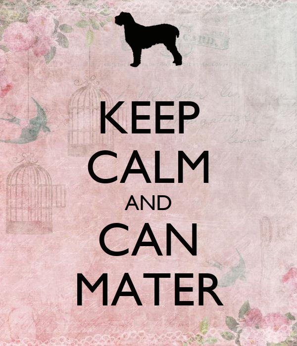 KEEP CALM AND CAN MATER