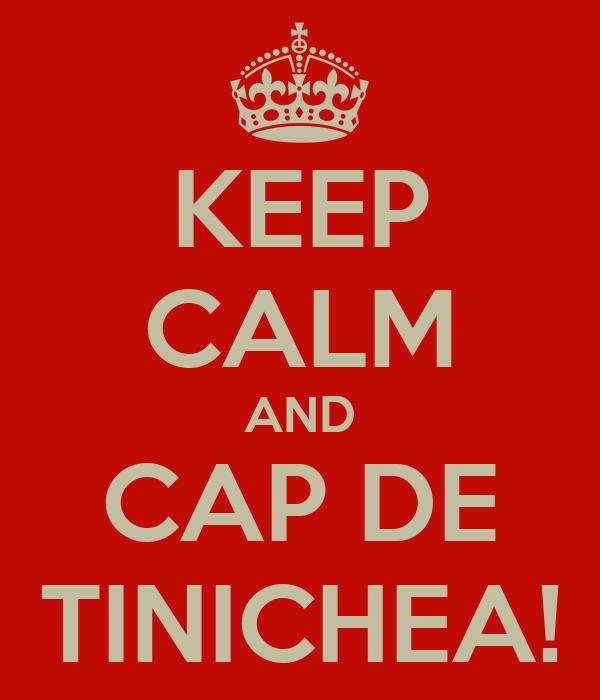 KEEP CALM AND CAP DE TINICHEA!
