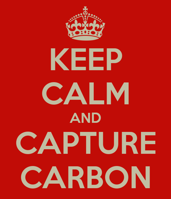 KEEP CALM AND CAPTURE CARBON