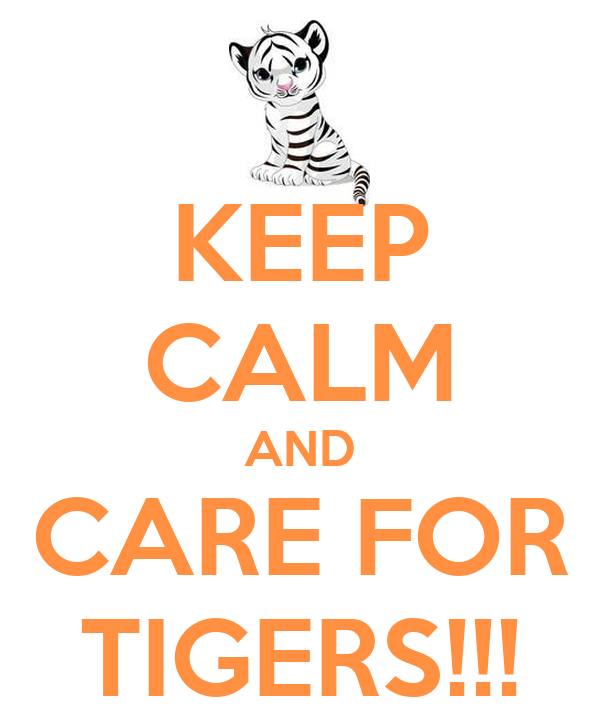 KEEP CALM AND CARE FOR TIGERS!!!