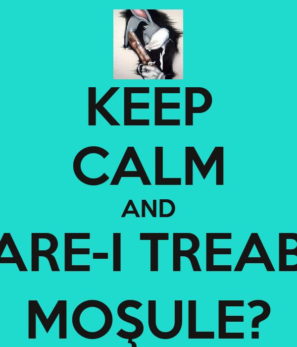 KEEP CALM AND CARE-I TREABA MOŞULE?