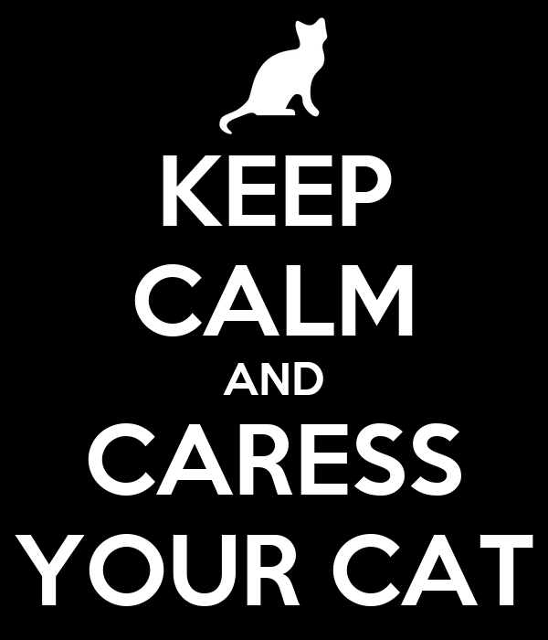 KEEP CALM AND CARESS YOUR CAT