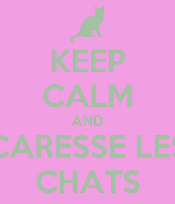 KEEP CALM AND CARESSE LES CHATS