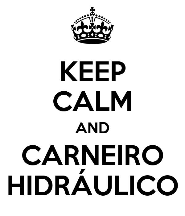 KEEP CALM AND CARNEIRO HIDRÁULICO