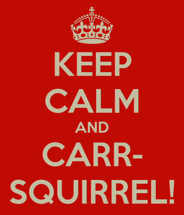 KEEP CALM AND CARR- SQUIRREL!