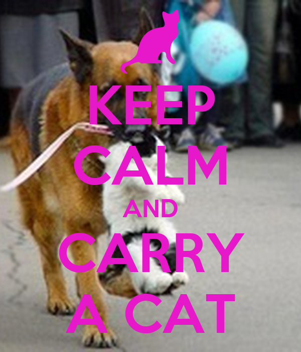 KEEP CALM AND CARRY A CAT