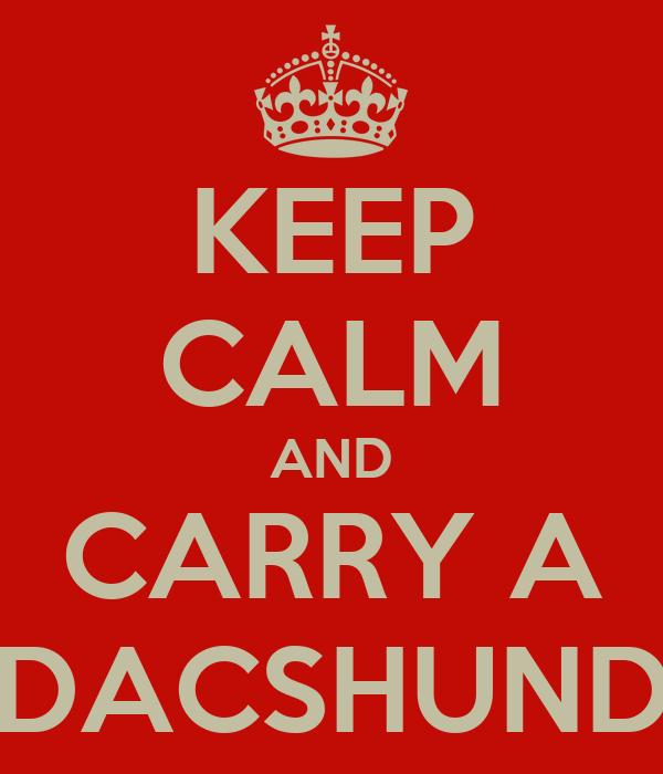 KEEP CALM AND CARRY A DACSHUND