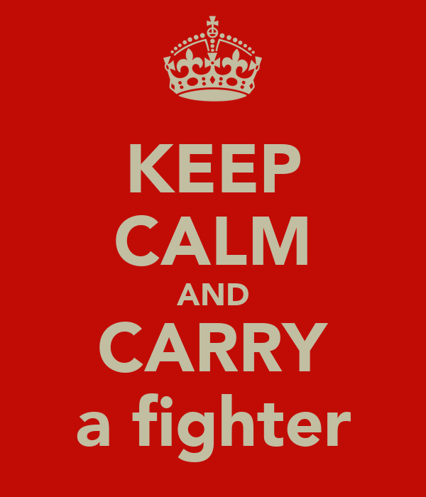 KEEP CALM AND CARRY a fighter
