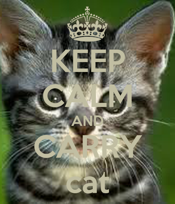 KEEP CALM AND CARRY cat