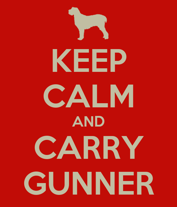 KEEP CALM AND CARRY GUNNER