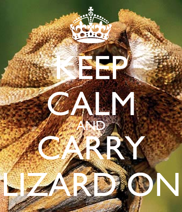 KEEP CALM AND CARRY LIZARD ON