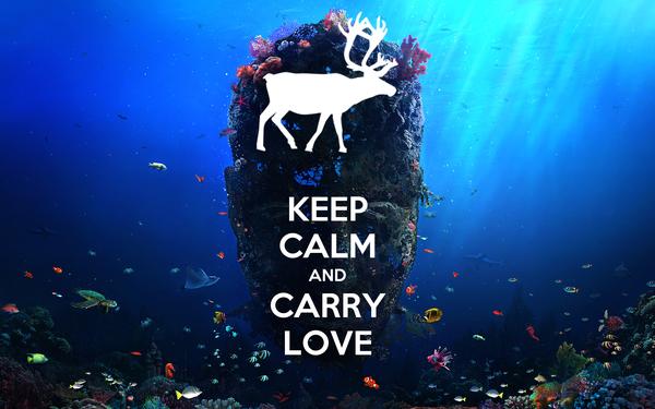 KEEP CALM AND CARRY LOVE