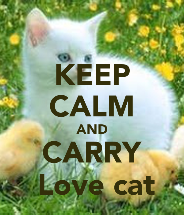 KEEP CALM AND CARRY  Love cat