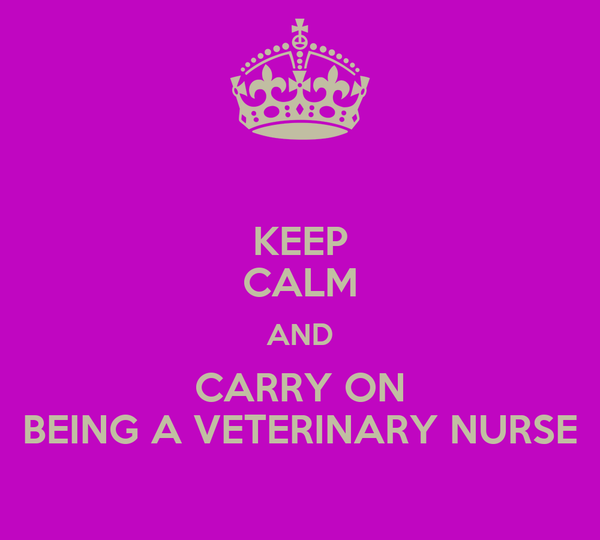 KEEP CALM AND CARRY ON BEING A VETERINARY NURSE