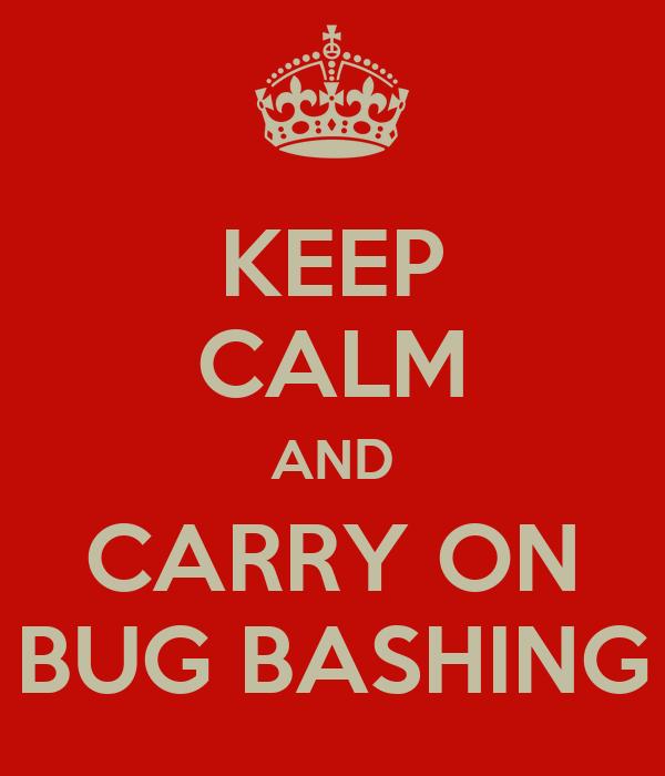 KEEP CALM AND CARRY ON BUG BASHING