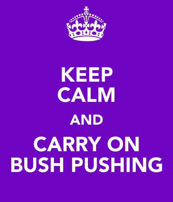 KEEP CALM AND CARRY ON BUSH PUSHING