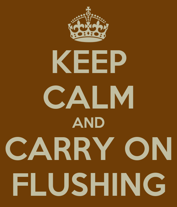 KEEP CALM AND CARRY ON FLUSHING