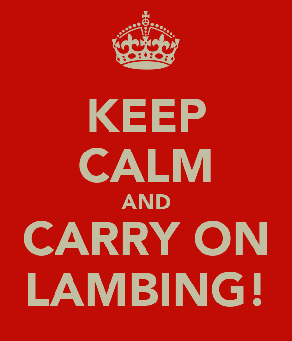KEEP CALM AND CARRY ON LAMBING!
