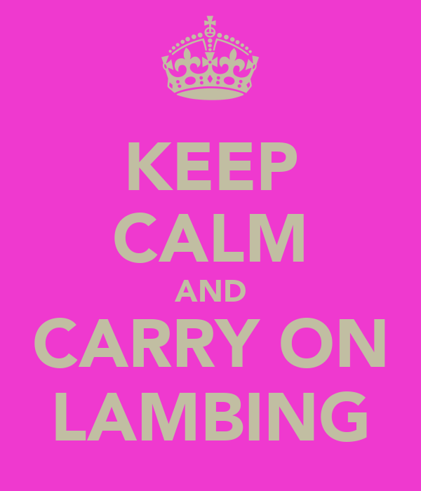 KEEP CALM AND CARRY ON LAMBING