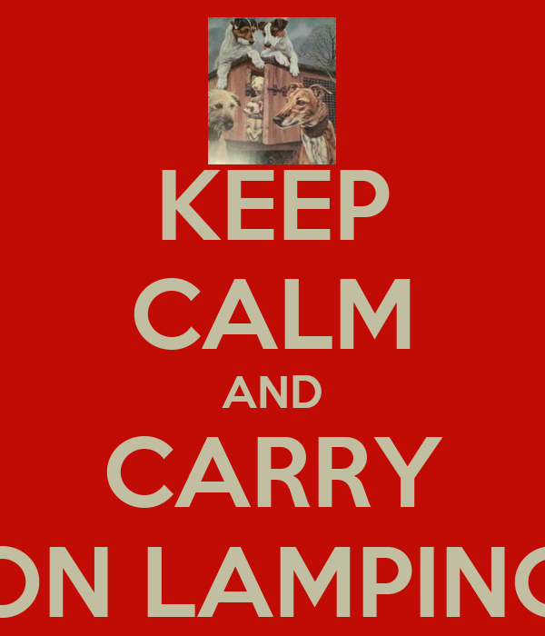 KEEP CALM AND CARRY ON LAMPING