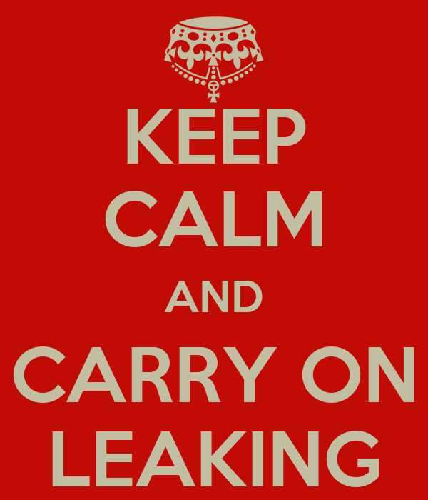 KEEP CALM AND CARRY ON LEAKING