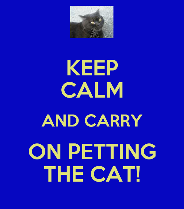 KEEP CALM AND CARRY ON PETTING THE CAT!