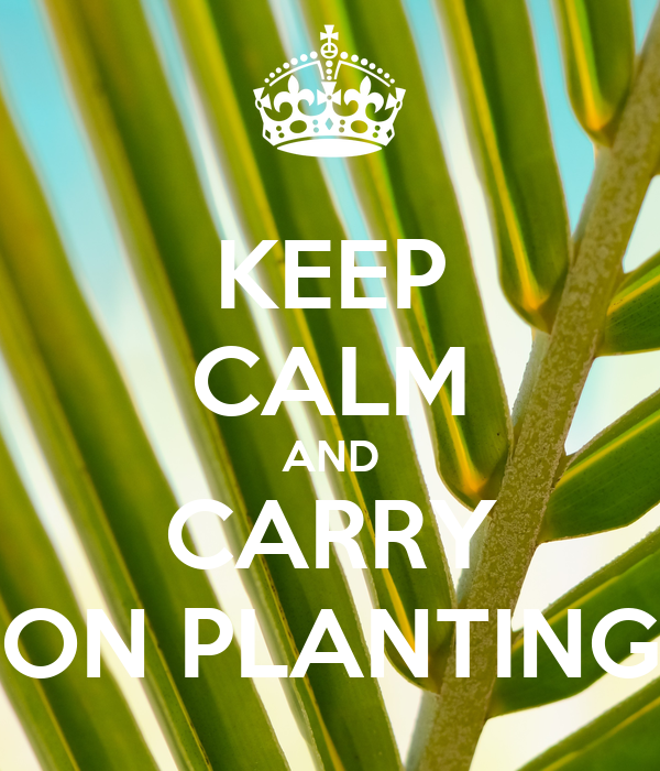KEEP CALM AND CARRY ON PLANTING
