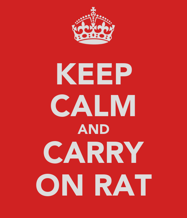 KEEP CALM AND CARRY ON RAT