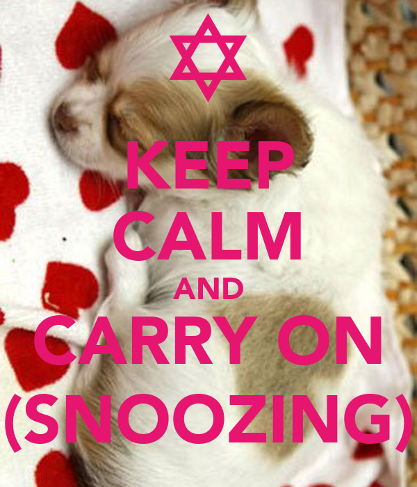 KEEP CALM AND CARRY ON (SNOOZING)