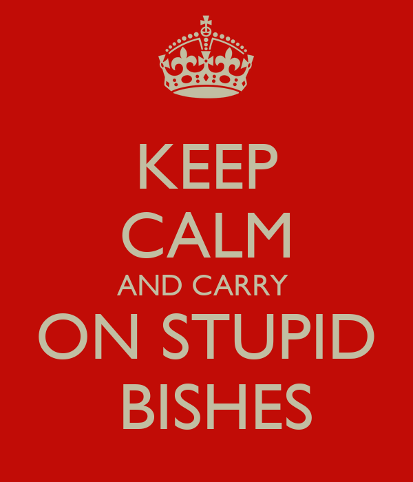 KEEP CALM AND CARRY   ON STUPID    BISHES