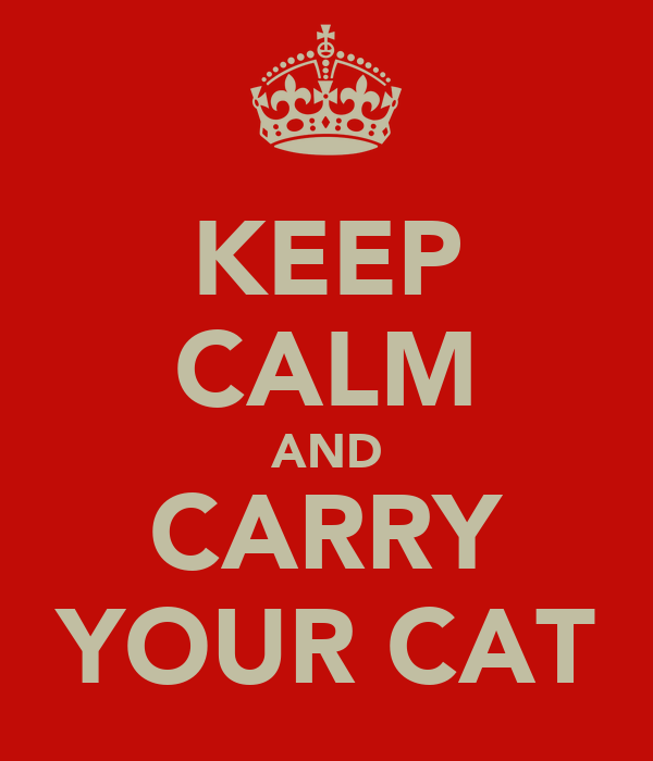 KEEP CALM AND CARRY YOUR CAT