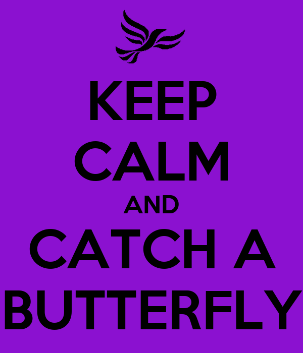 KEEP CALM AND CATCH A BUTTERFLY
