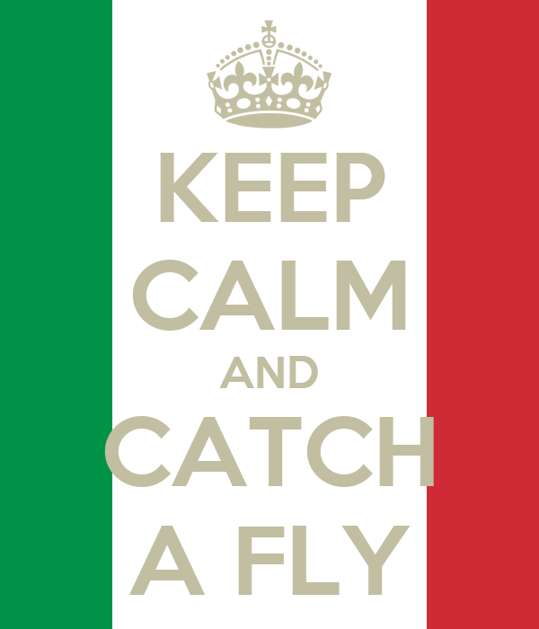 KEEP CALM AND CATCH A FLY