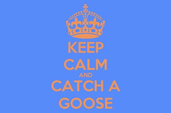 KEEP CALM AND CATCH A GOOSE