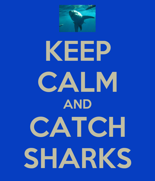 KEEP CALM AND CATCH SHARKS