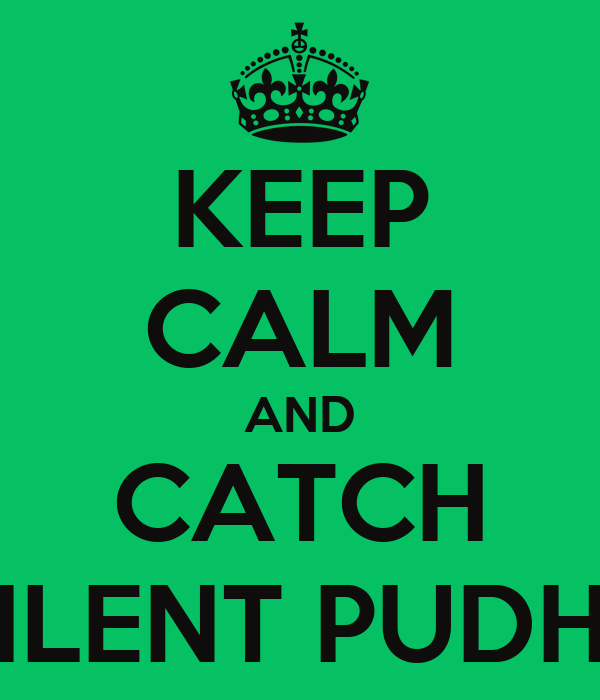 KEEP CALM AND CATCH SILENT PUDHS