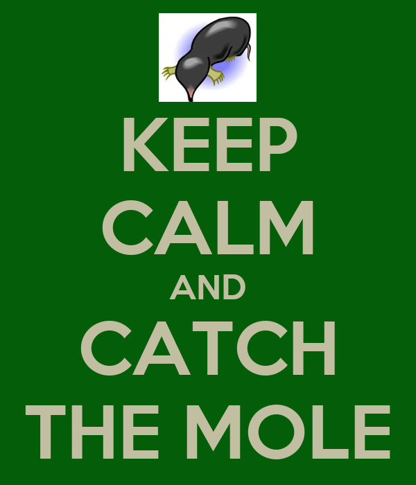 KEEP CALM AND CATCH THE MOLE