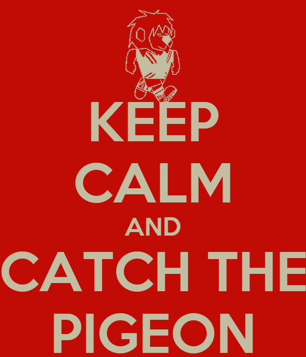KEEP CALM AND CATCH THE PIGEON