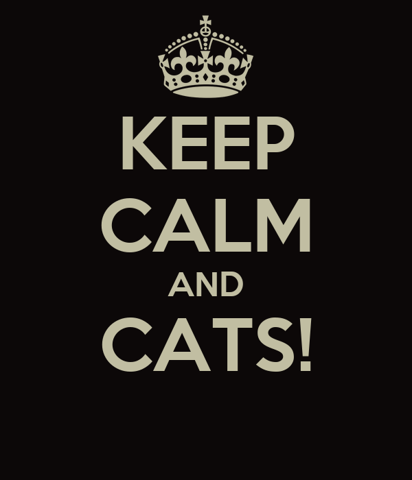 KEEP CALM AND CATS!
