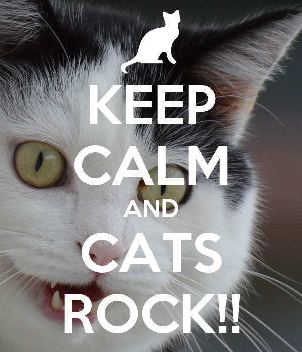KEEP CALM AND CATS ROCK!!