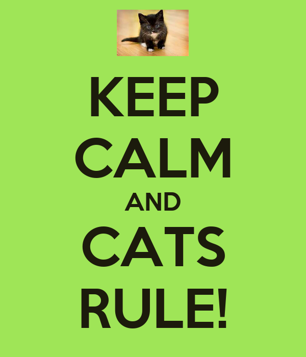 KEEP CALM AND CATS RULE!